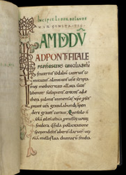 Interlace Initial, In St. Aldhelm's 'In Praise Of Virginity' f.9r